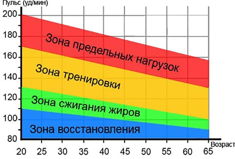 зона жиросжигания