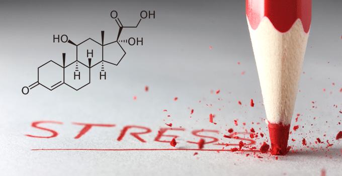 Кортизол и отеки