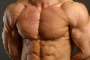 Рельеф мышц груди