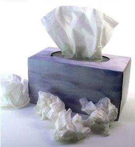 Бумажные носовые платки