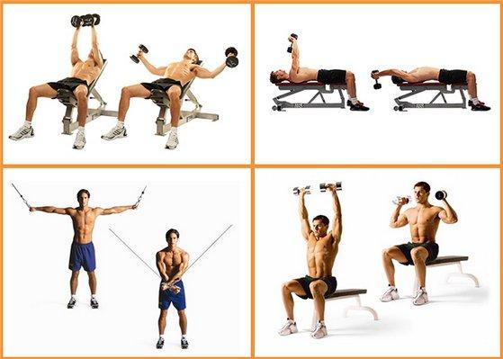 Упражнение для мышц груди с гантелями